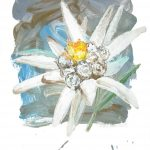 Edelweiss (2011)